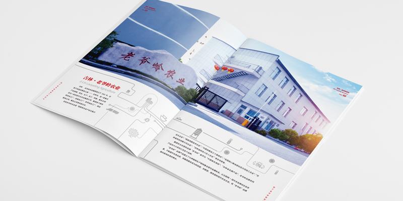 天津画册设计